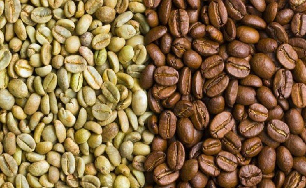 il chicco di caffè verde influisce sul sonno