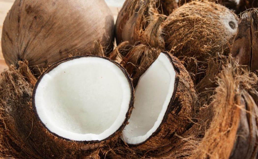noci di cocco proprieta