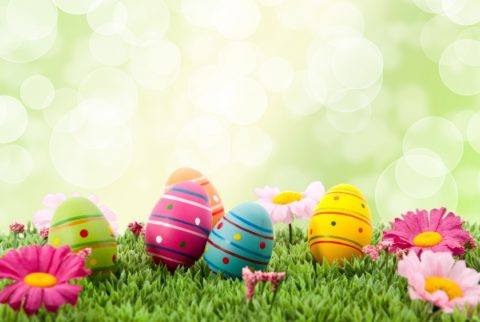 WEEKEND WEELNESS – SPECIAL EASTER